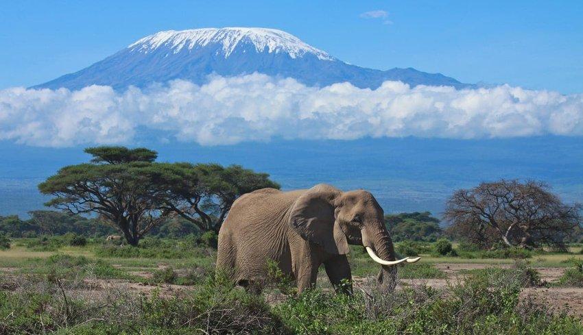 Mount Kilimanjaro – Tanzania