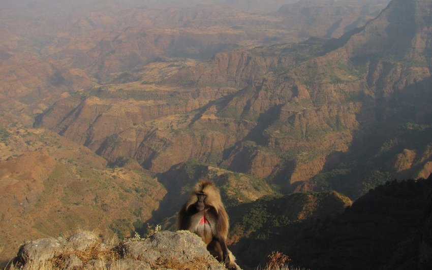 Simien Mountains – Ethiopia