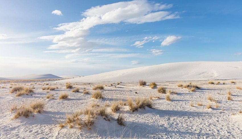 Explore White Sands National Monument
