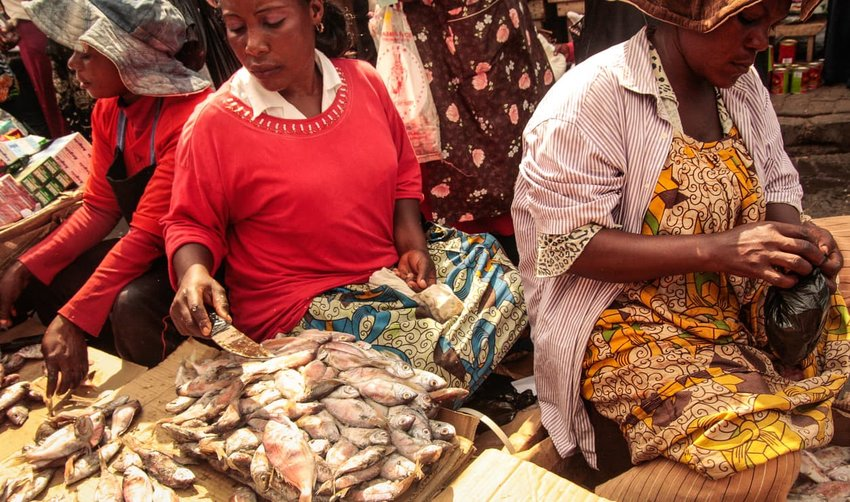 women selling fish in market in Africa