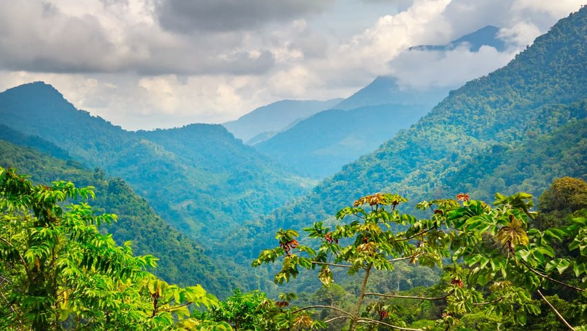 Sierra Nevada de Santa Marta National Park, Colombia