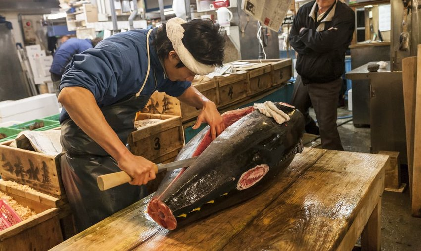 Cutting tuna at Tsukiji Fish Market