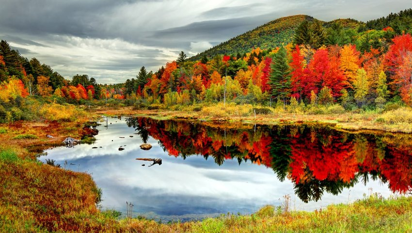 8 Places in the U.S. to See the Leaves Change Color this Fall