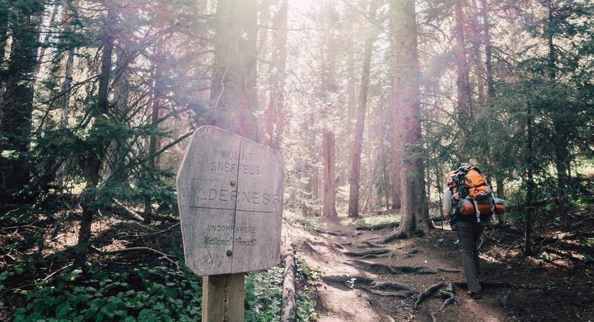 mt. sneffels trail, telluride
