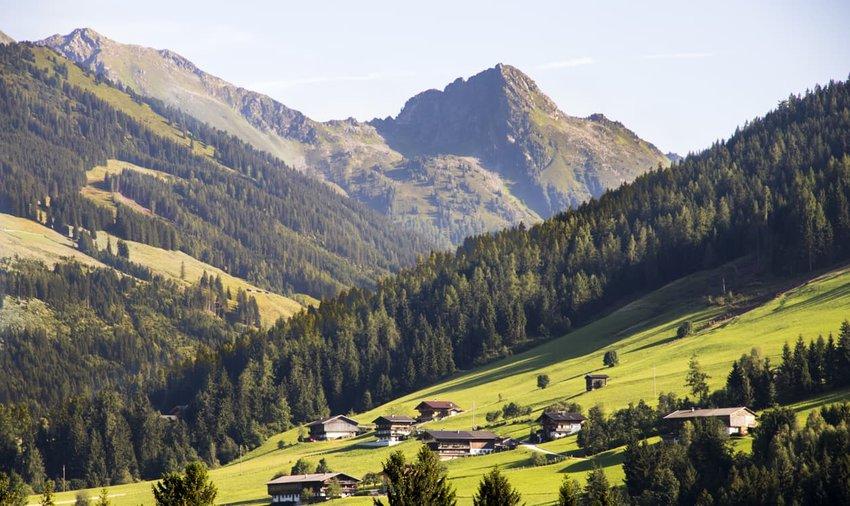 Bergwald, Austria