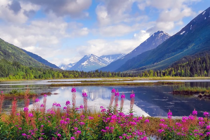 Why You Need To Book An Alaskan Cruise RIGHT NOW