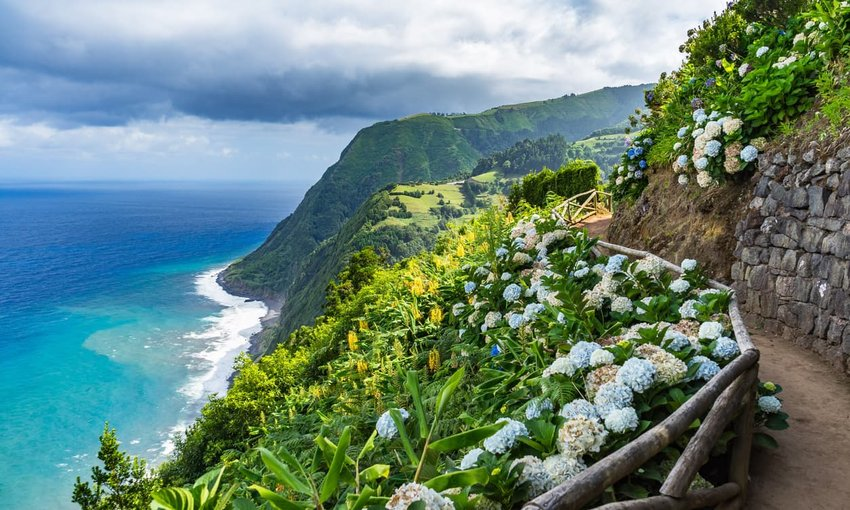 Coastal path with Hydrangeas, Sao Miguel, Azores, Portugal