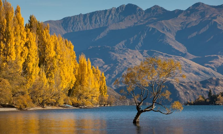 Lake Wanaka in autumn colors, New Zealand