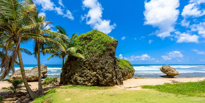 Rock formation on the beach of Bathsheba, Barbados