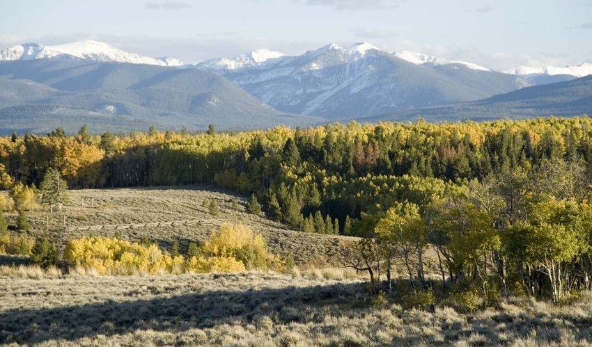 North Park Colorado Ranch