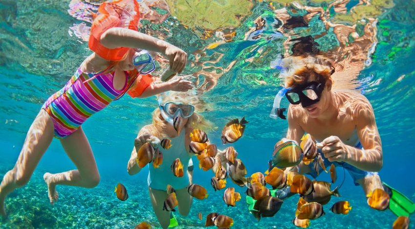 Happy family snorkelling in tropical sea