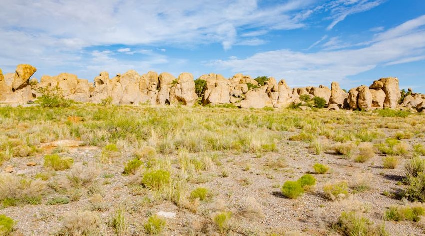 City of Rocks State Park in New Mexico, USA
