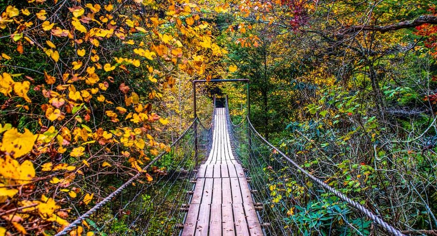 A Walk Through Fall, Fall Creek Falls State Park, Pikeville, Tennessee, United States