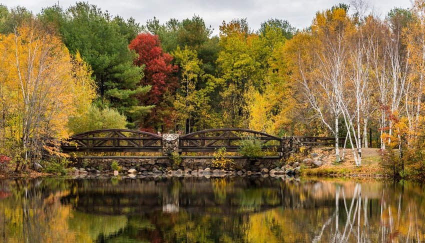 A Bridge and Colorful Trees Reflected in a Pond in Fall