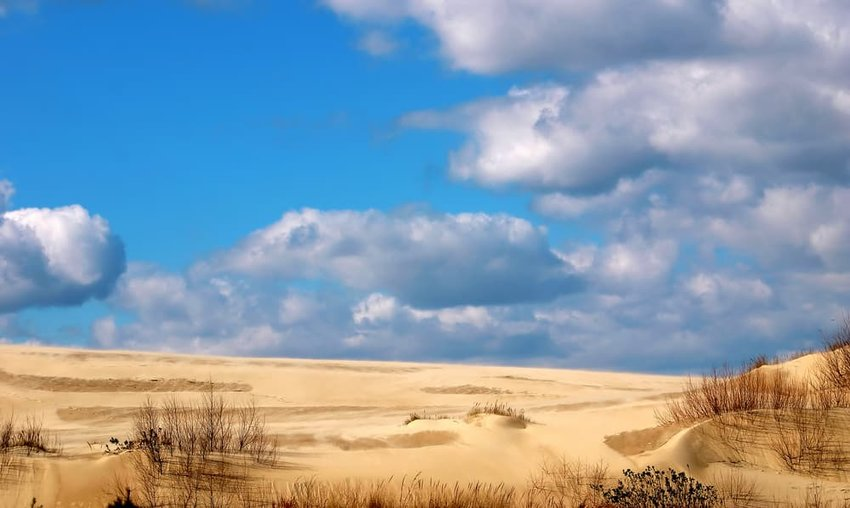 Jockey's Ridge State Park in Kitty Hawk North Carolina.