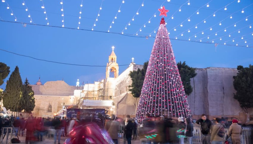 decorated christmas tree in Bethlehem, Palestine