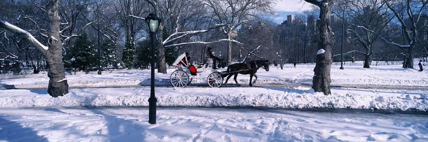 Panoramic view of snowy city street lamps with horse carriage in central park