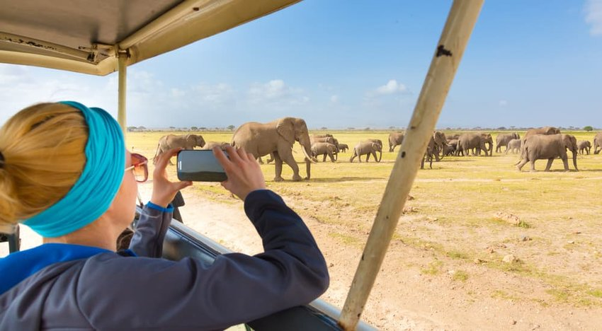Woman taking a photo on a safari
