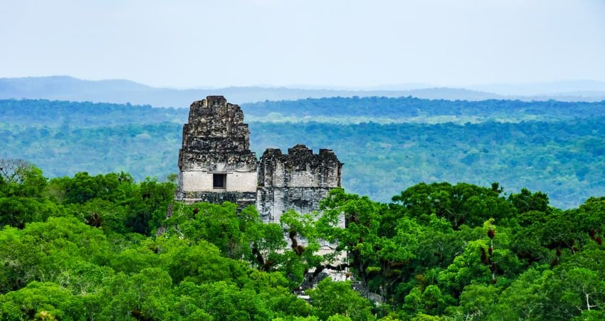 aerial view of Tikal, Guatemala