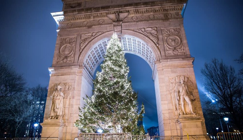 Christmas tree under arch on Washington Square North at night in NYC.