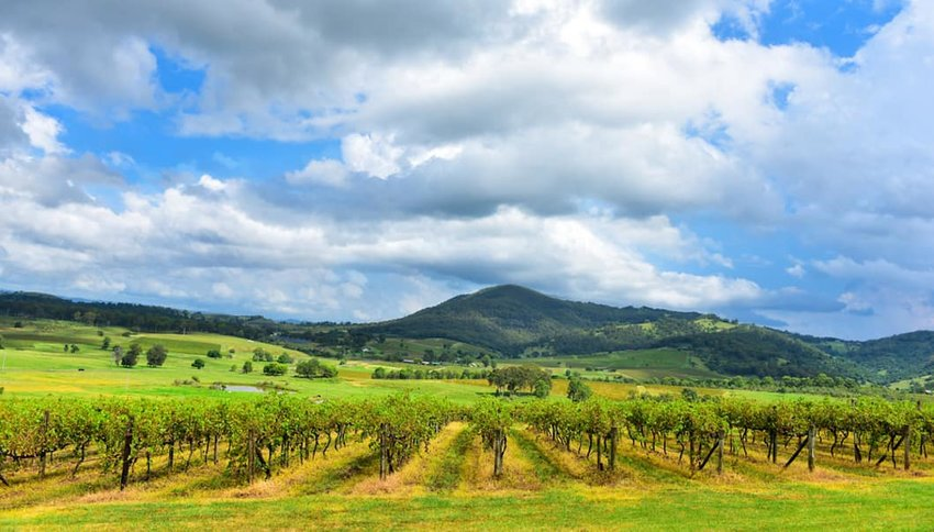 Hunter-Valley--Australia