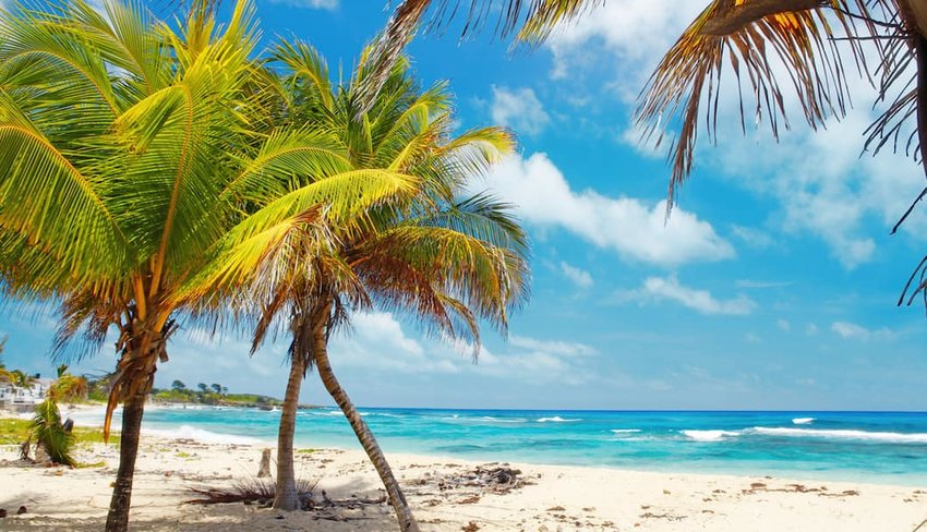 5 Reasons You Need to Visit Jamaica, Like Yesterday