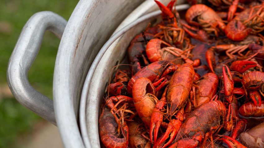 Louisiana-Crawfish-Boil