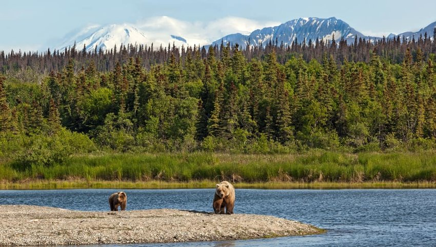 Photo of two bears, a lake, and mountains in Katmai National Park and Preserve