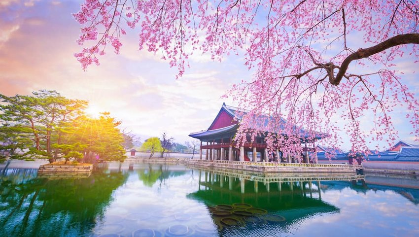 10 Photos of Seoul That Will Make You Want to Book a Flight
