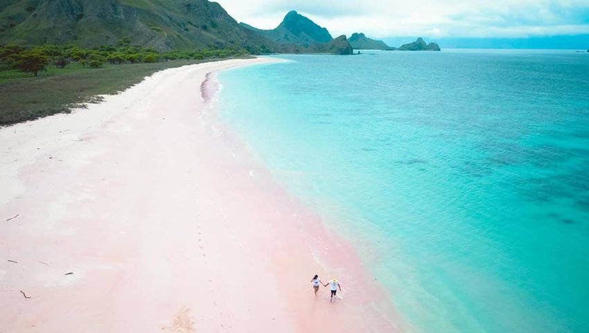 5 Pink Sand Beaches That Are the Stuff of Dreams