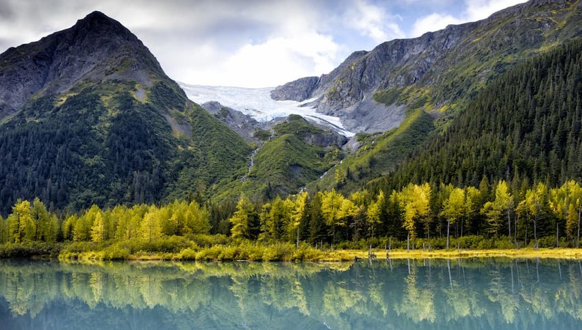 Insider's Guide to Visiting Alaska This Summer