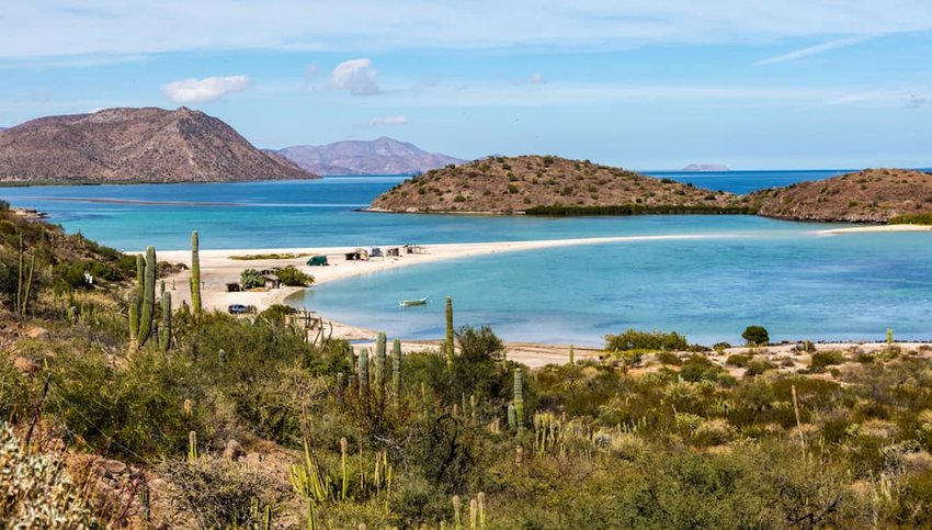 The Best of Baja California