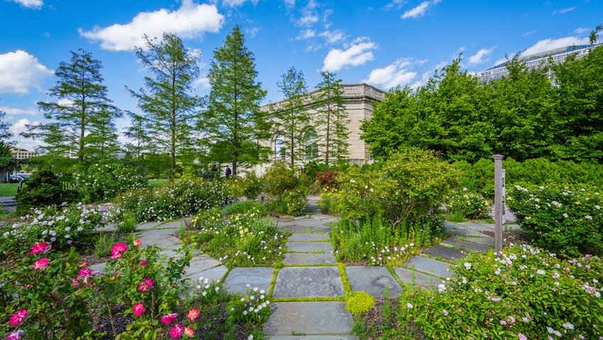 10 Botanic Gardens You Can't Miss in the U.S.