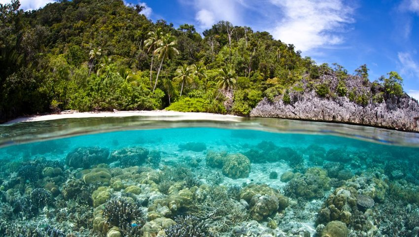 10 Exotic Places Around the World to Snorkel