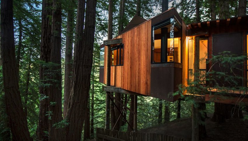 7 Incredible Treetop Hotels