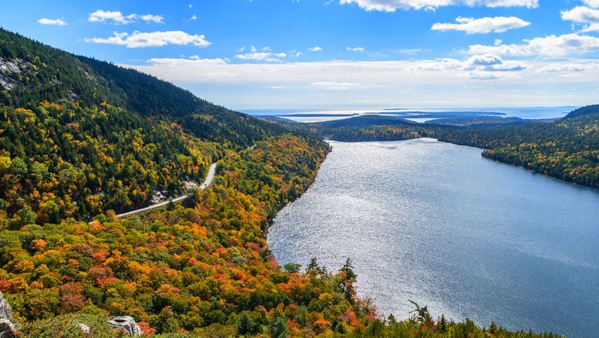 Photo of a road among autumn trees and beside a big blue lake