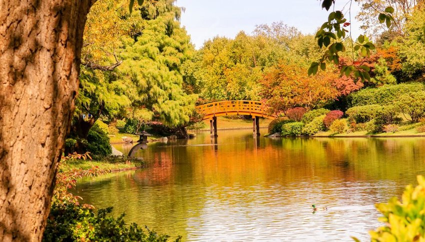Photo of bridge over a pond in St Louis Park