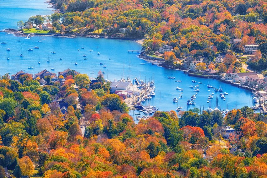 Aerial photo of trees changing color around the Maine coast