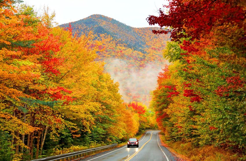 Trees with changing colors along Kancamagus Highway