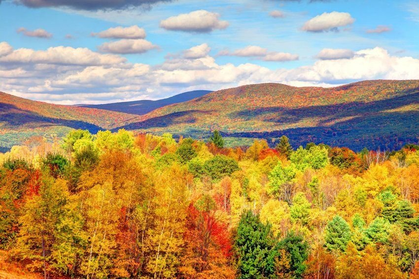 The Best Places to Go Leaf Peeping in New England