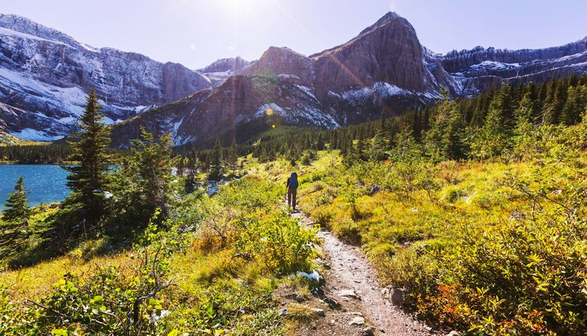 Hiker on a trail in Glacier national park