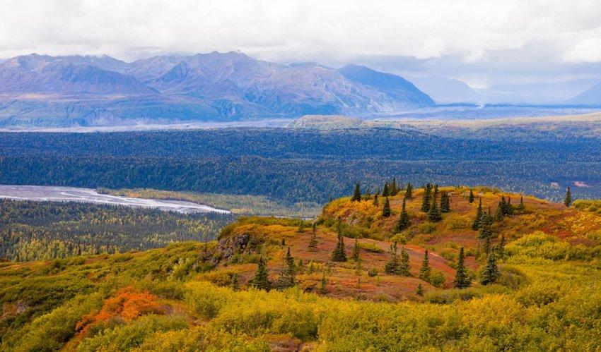Kesugi Ridge overlooking the Chulitna River valley in Alaska