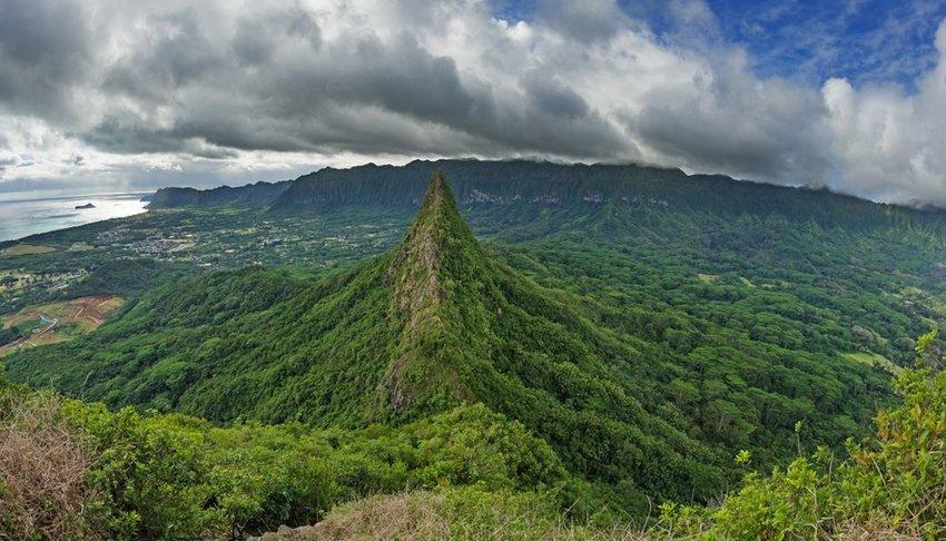View of vegetation covered Third Olomana Peak