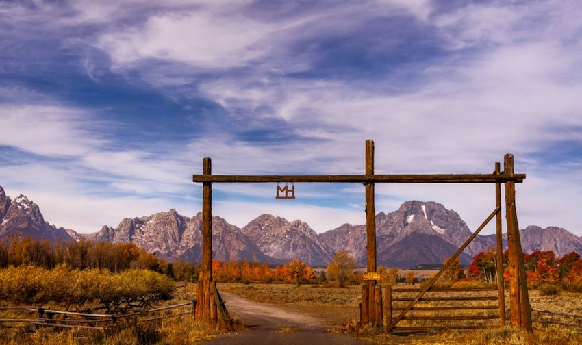 Why You Should Consider Staying at a Ranch