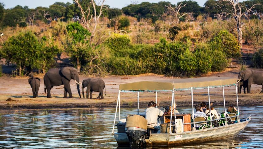 Tourists observing elephants from a boat, Chobe River, Botswana, Africa
