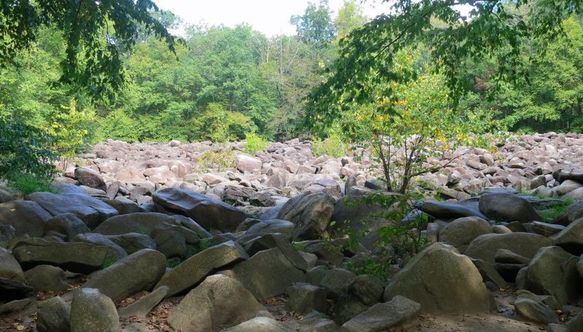 Hundreds of differently shaped rocks surrounded by trees
