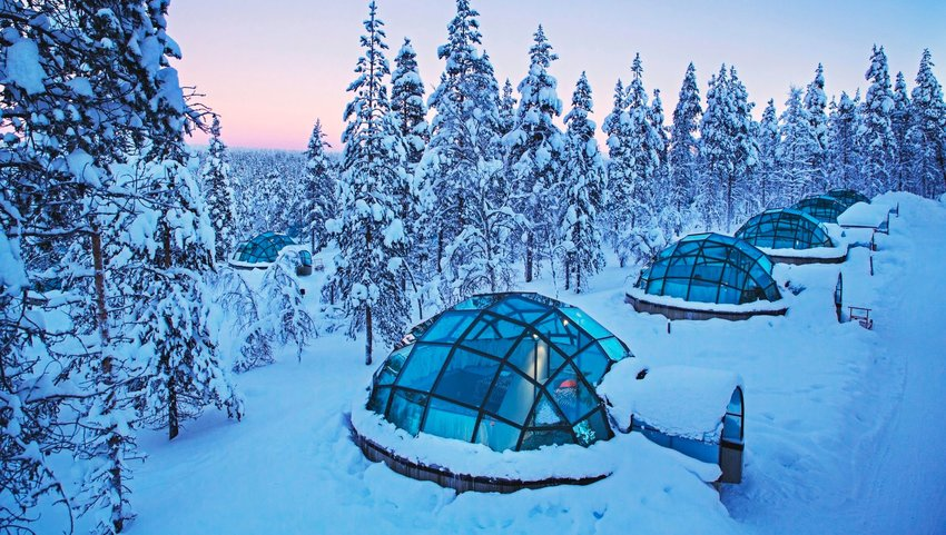 Row of glass igloos surrounded by trees in snow
