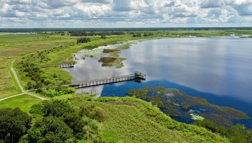 Aerial view of Everglades National Park
