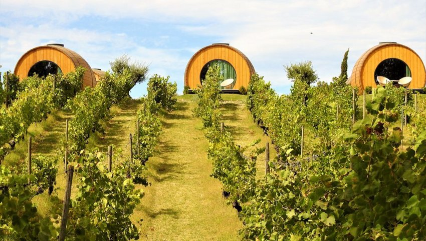 Make Your Next Hotel Stay at a Vineyard