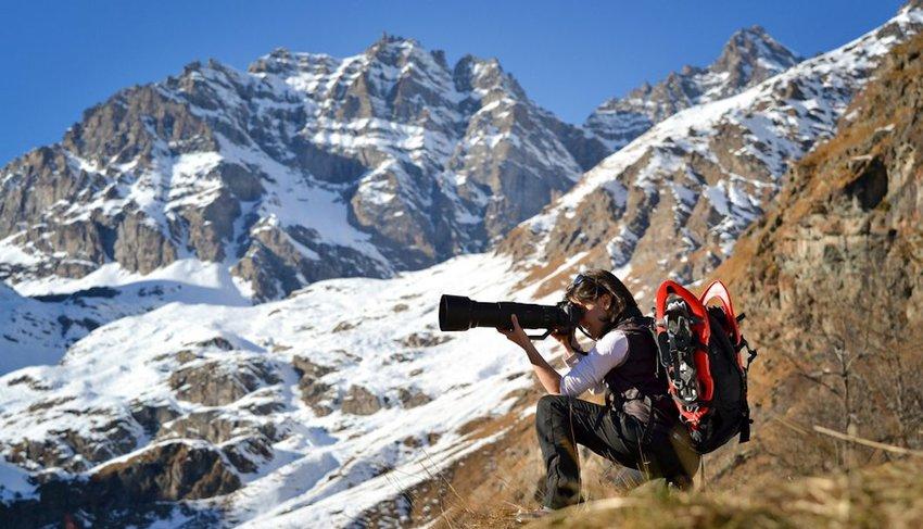 8 Amazing Nature Documentaries to Stream Now